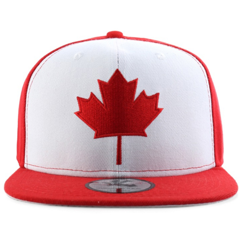 Perfect style two tone maple embroidery logo snapback hat