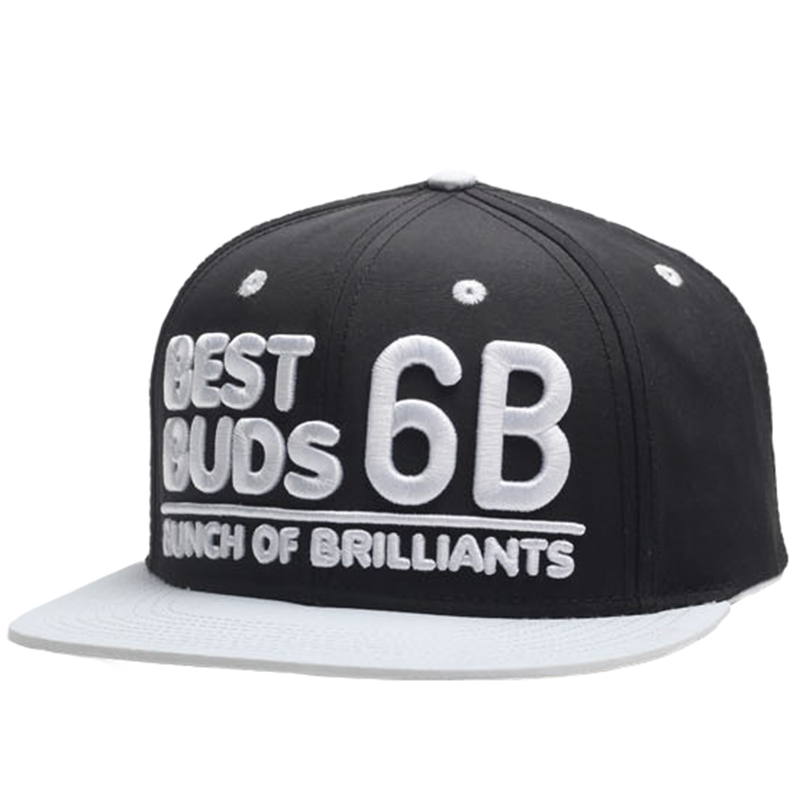 Raised 3D puff embroidery polyester snapback hat